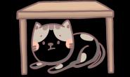 猫猫也有高EQ?面对冲突它们这样做!