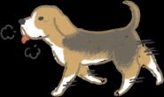 狗狗每天散步运动 为什么体重还是直线上升?