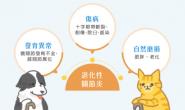 认识犬猫关节退化的成因与症状 早期发现及时处理
