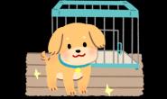 连假入住宠物旅馆4大注意事项不可少!