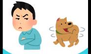 为什么有人不爱狗狗?让我们从自身做起
