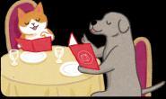 不可不知的食安风险 快换掉猫狗的万年菜单!