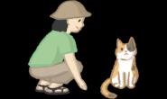 如何接近猫咪?4步骤让你与猫猫的第一次接触更顺利!
