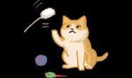 猫狗好动好难拍?4招教你拍出超萌宠物照片!