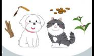 猫猫狗狗使用中药的好处、方式与禁忌是什么?