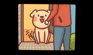狗狗不出门还是会有寄生虫?原因可能出在饲主或环境