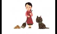 怀孕不能养猫咪?小孩不能跟猫咪共住?做好这些就没问题