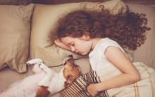 11种狗说爱你的方式 和你一起睡