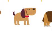 你抱狗狗的方式对了吗?NG抱狗姿势大解密,三招教你如何抱狗狗!
