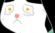 猫咪感冒症状有哪些?泪流满面可能是猫咪感冒征兆!