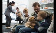 选择一个好的兽医时要采取的前5个步骤