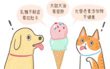 天气热~猫狗可以吃冰淇淋吗?3个不该吃的理由!