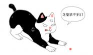 雷射笔逗猫咪好好玩?违背狩猎天性 造成挫折感!