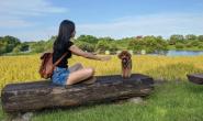 爱狗就像是爱人,要理解、要调整、要用适合它的方式让它快乐
