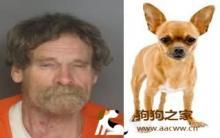 性侵吉娃娃 致狗重伤 毒虫判刑10年