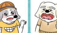 臭臭!口腔就是你!不能忽略的狗狗口腔保健