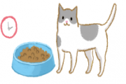 4个饮食小秘诀 猫狗肥肉快退散!