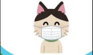 猫咪感冒了吗?小心是难缠的疱疹病毒找上门