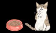"""猫咪下巴""""长粉刺""""?换个碗试试!"""