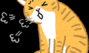 猫狗嘴巴怪怪的?小心食道卡异物!