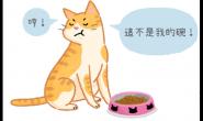 猫咪也会认碗吗?猫咪就是任性